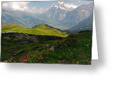 Alpine Roses In Foreground Greeting Card