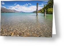 Alpine Scenery From Dart River Bed In Kinloch, New Zealand Greeting Card