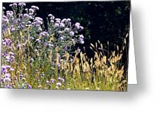 Alpine Thistles And Grasses Greeting Card