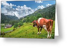 Alpine Travel Stories Greeting Card