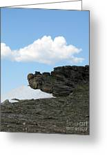 Alpine Tundra - Up In The Clouds Greeting Card
