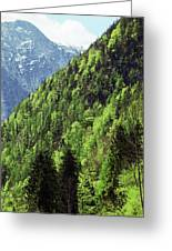 Alpine View In Green Greeting Card