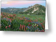 Alpine Wildflowers And View At Sunset Greeting Card