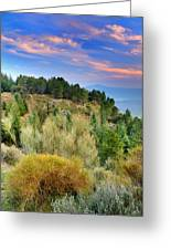 Alpujarras Forest At Sunset Greeting Card