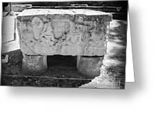 Altar At Copan Ruins In Honduras Greeting Card