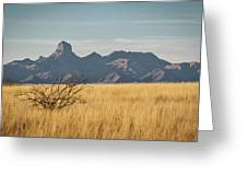 Altar Valley  Greeting Card
