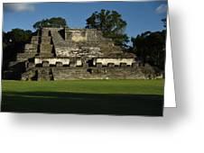 Altun Ha Mayan Temple Greeting Card