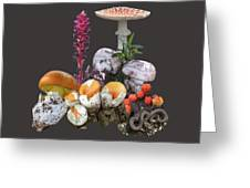 Amanitas 2 Greeting Card