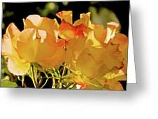 Amarillo 003 Greeting Card