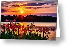 Amaryllis At Sunrise Over Lake Greeting Card