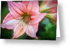 Amaryllis And Tree Frog Painted  Greeting Card