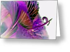 Amaryllis Butterfly II Greeting Card