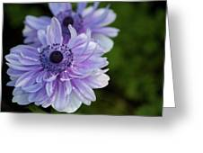 Amazing Purple Greeting Card
