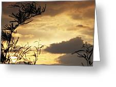 Amber Sky Greeting Card