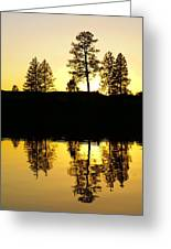 Amber Sunset Greeting Card