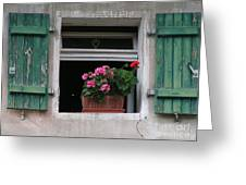 Amberg Window Greeting Card