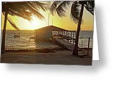 Ambergris Cayr Sunrise Palm Trees San Pedro Belize Greeting Card