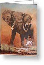 Amboseli Elephant Greeting Card
