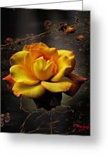 Ambrosia Greeting Card