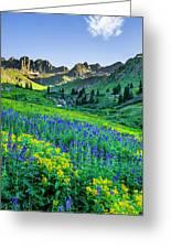 American Basin In Bloom Greeting Card