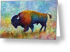 American Buffalo 5 Greeting Card