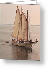 American Eagle Sail Greeting Card