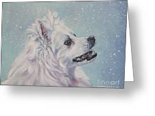 American Eskimo Dog In Snow Greeting Card