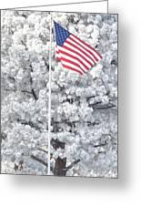 American Flag Snow  Greeting Card