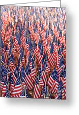 American Flags In Tampa Greeting Card
