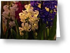 American Flowers Greeting Card