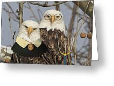 American Gothic Eagle Style Greeting Card