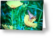 American Lady On Coreopsis Greeting Card