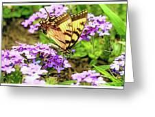 Yellow Eastern Tiger Swallowtail Series Greeting Card