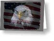 American Pride 2 Greeting Card