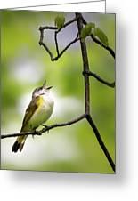 American Redstart Female 2 Greeting Card