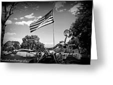 American Renagades Greeting Card by Rhonda DePalma