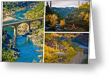 American River Triptych 3 Greeting Card by Sherri Meyer