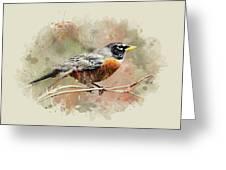American Robin - Watercolor Art Greeting Card