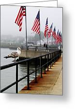 American Seagull Greeting Card