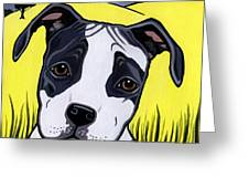 American Staffy Greeting Card by Leanne Wilkes