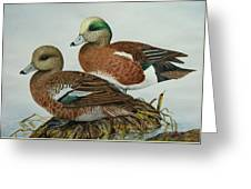 American Widgeons Greeting Card