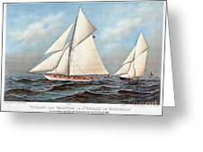 Americas Cup, 1883 Greeting Card
