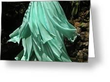 Ameynra Design Aqua-green Chiffon Skirt Greeting Card