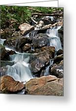 amicalola falls Ga Greeting Card