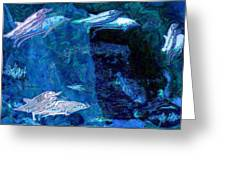 Amidst Dolphins Greeting Card