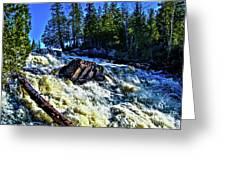 Amincon River Rootbeer Falls Greeting Card