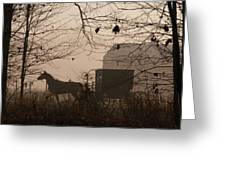 Amish Buggy Fall Greeting Card