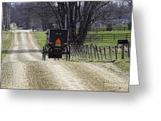 Amish Buggy March 2016 Greeting Card