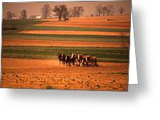 Amish Country Farm Landscape Greeting Card