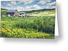 Amish Country Farm Warrens Greeting Card